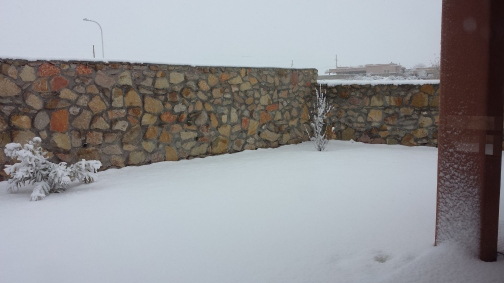 Kelli's Backyard Snow 2.jpg